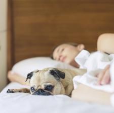 How mattress company Casper used influencer power to escape debt